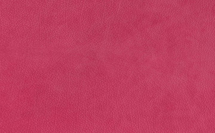 shocking pink eversoft calfskin